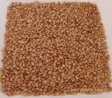 seminte de susan