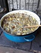 ciuperci2